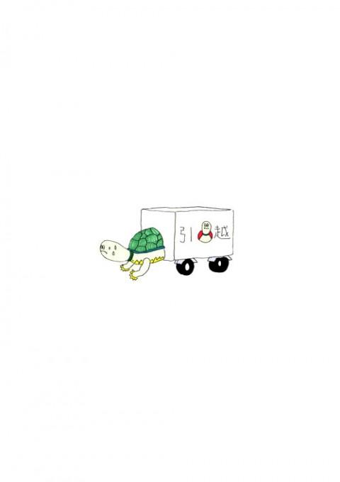 Moving Turtle Mark