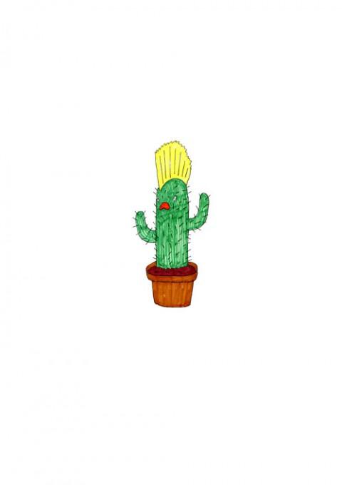 Cactus Punk