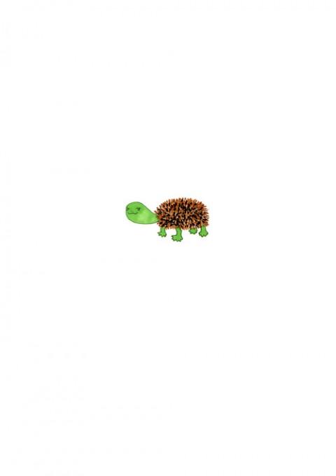 Tawashi Turtle