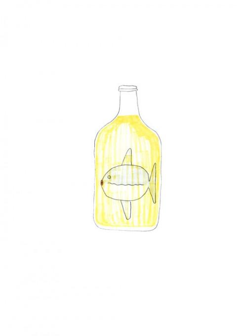 Sunfish Sake