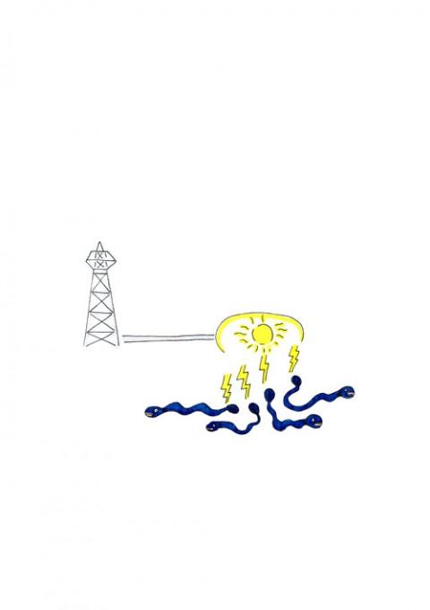 Electrophorus Electricus Company