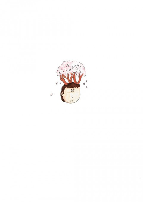 Cherry Blossoms Head