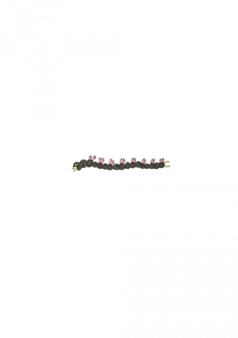Centipede Bird