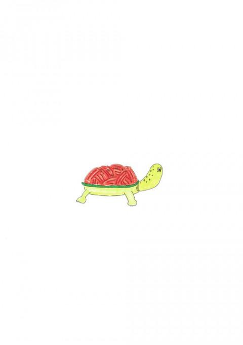 Spaghetti Turtle