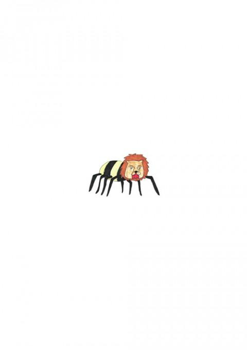 Lion Spider