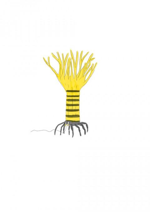 Tree Spider