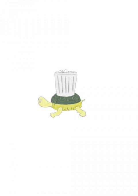 Garbage Turtle