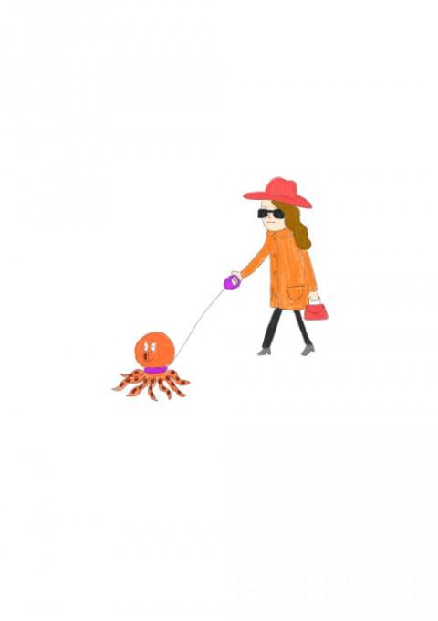 Octopus Pet