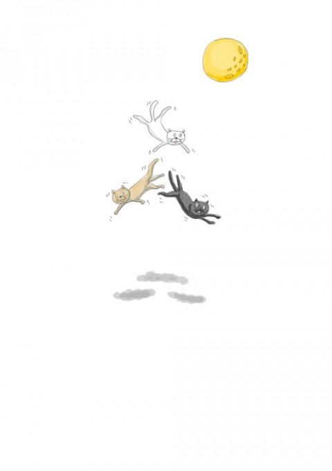 Zero Gravity Cat