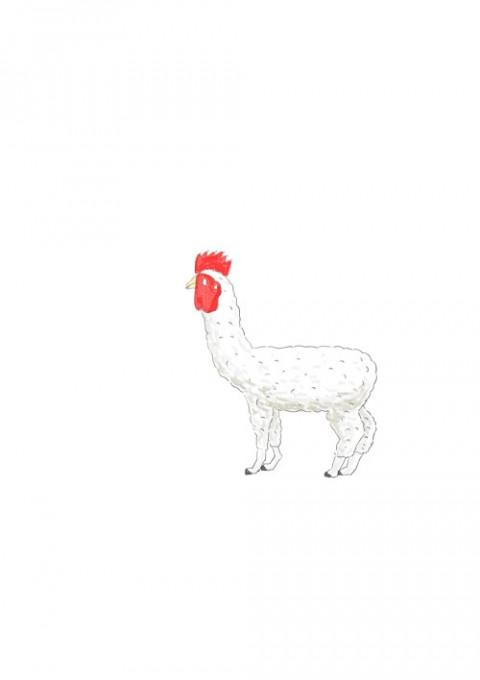 Alpaca Cock