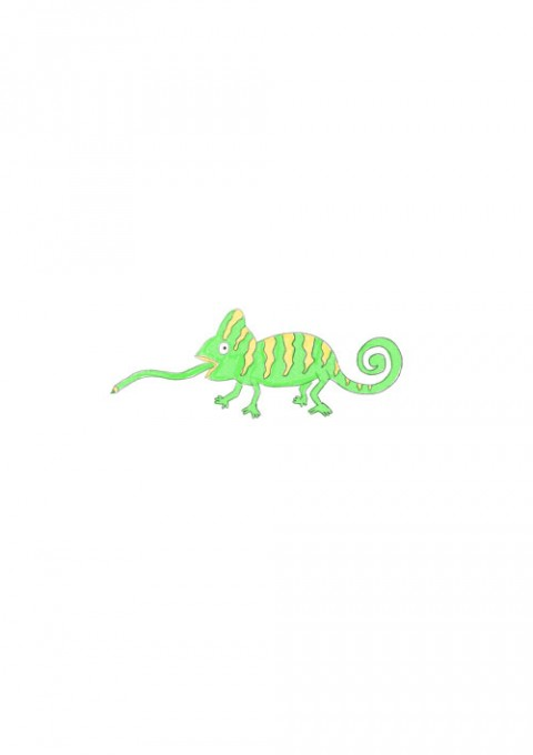 Pencil Chameleon