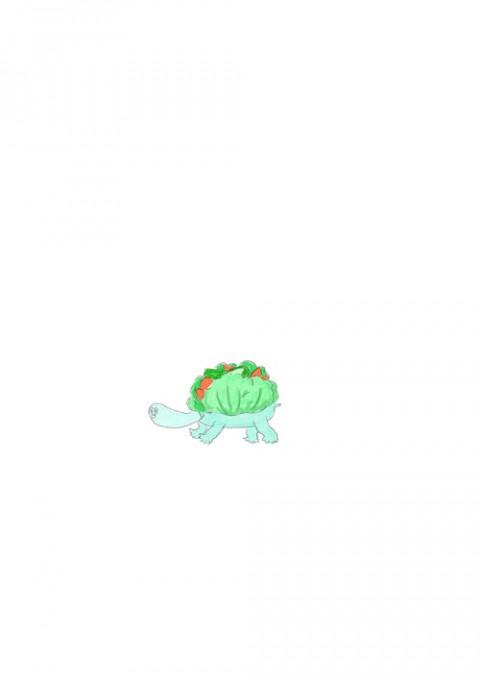 Salad Turtle