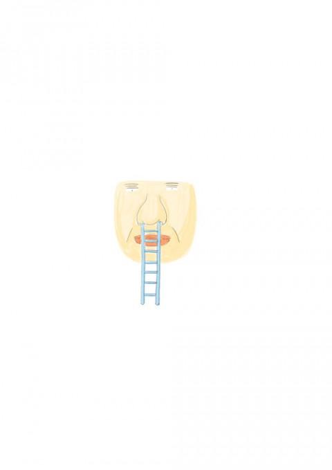 Ladder Runny Nose