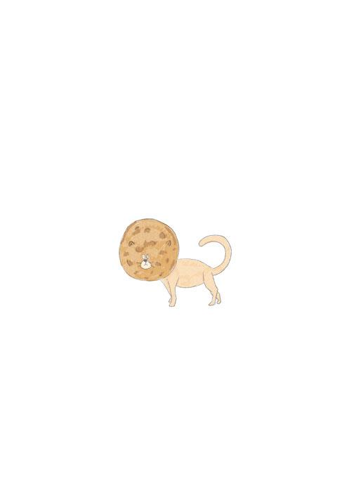 Senbei Cat
