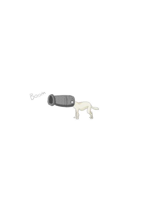 Canon Dog