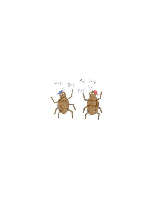 Cockroach Rapper