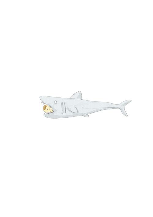 Parenting Shark