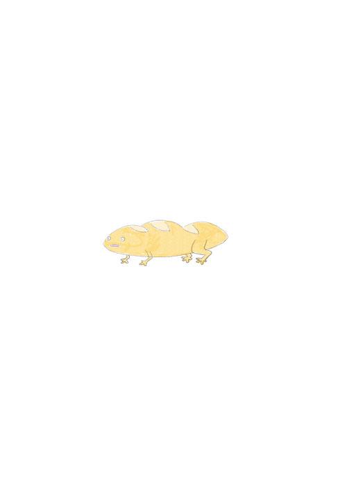 Baguette Salamander