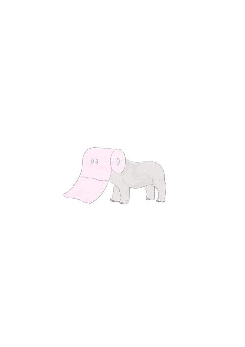 Toilet Paper Elephant