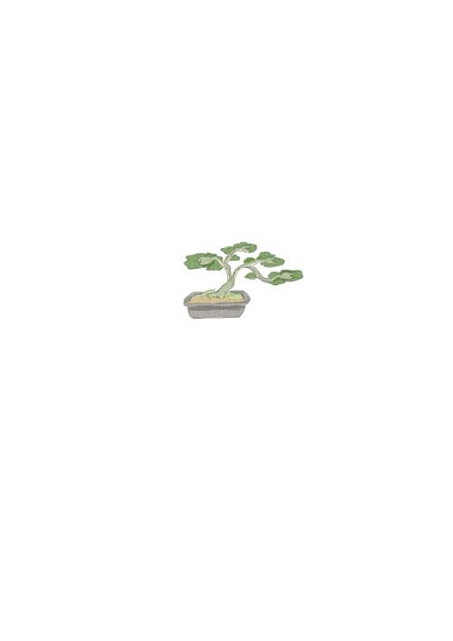 Snake Bonsai