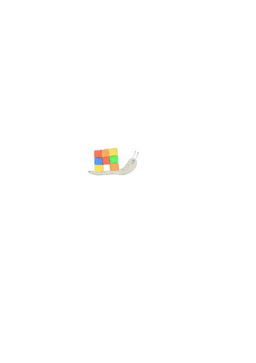 Rubiks Cube Snail