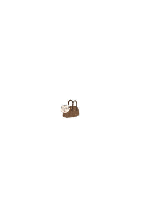 Boston Bag Ojisan